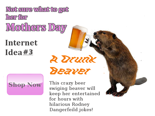 drunk beaver